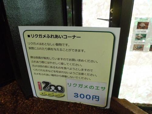 s_P1010445.jpg