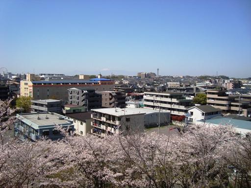 山田富士墳頂より