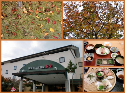 2012-11-255.jpg