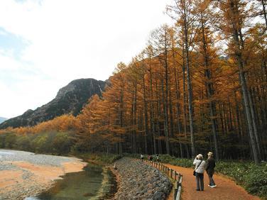 並木とオレンジ絨毯