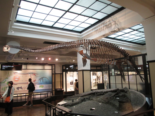 国立科学博物館003