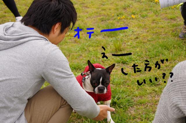 関ボス2012.04.15 504 (640x426)