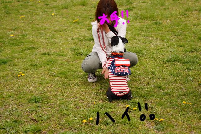 関ボス2012.04.15 527 (640x426)
