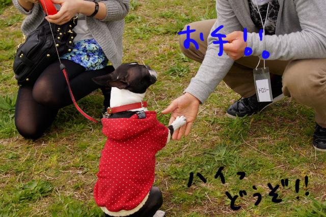 関ボス2012.04.15 525 (640x426)