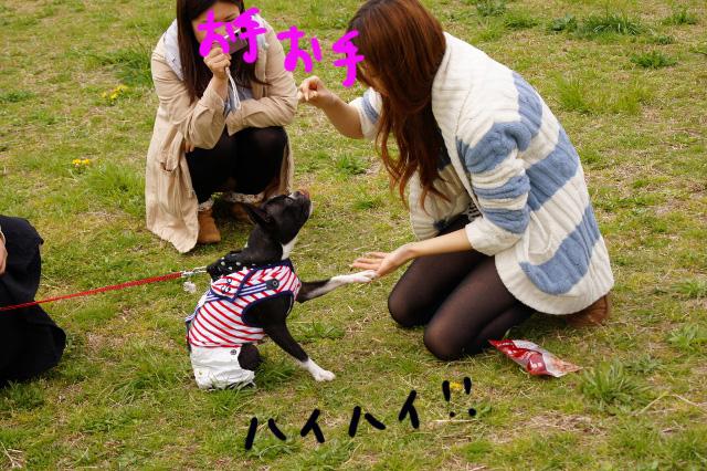 関ボス2012.04.15 524 (640x426)
