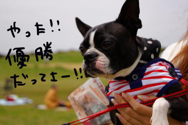関ボス2012.04.15 538 (640x426)