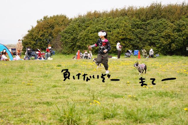 関ボス2012.04.15 594 (640x426)