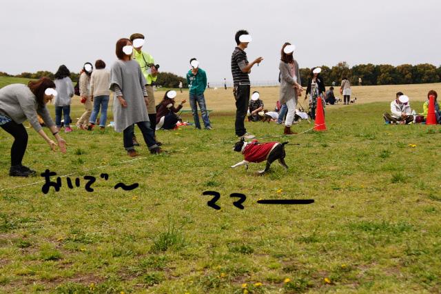 関ボス2012.04.15 633 (640x426)