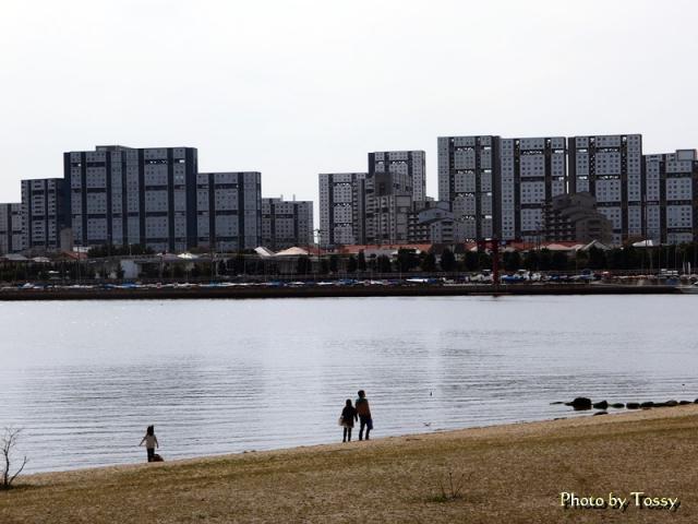 香櫨園浜 芦屋公団住宅
