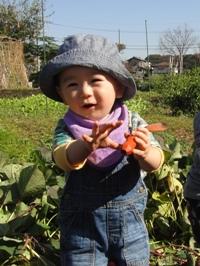 imo4_20121112195606.jpg