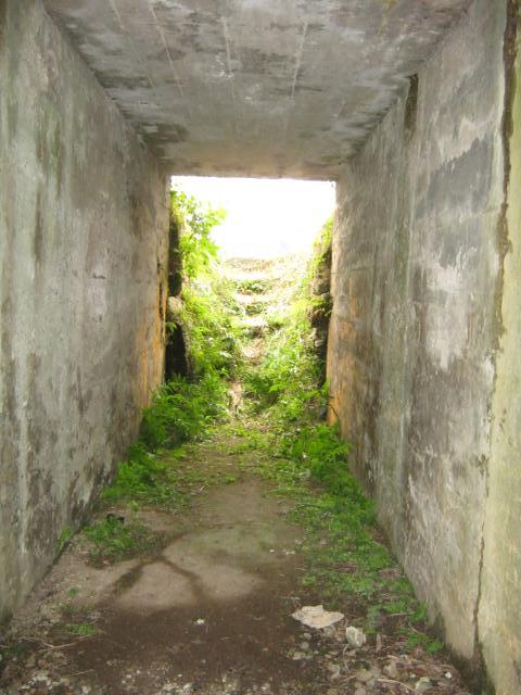 立野原監的壕2 (7)