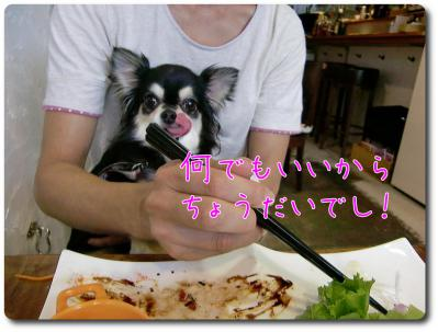 CIMG0171_convert_20120924214707.jpg