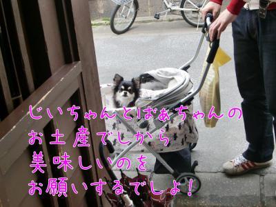 CIMG7790_convert_20120520211318.jpg