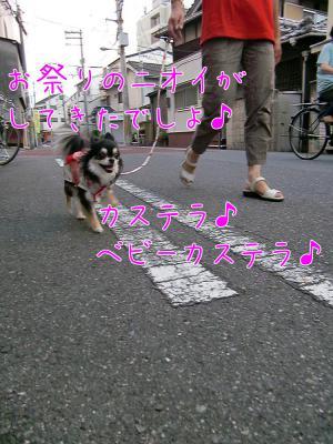 CIMG8893_convert_20120807205539.jpg