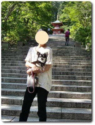 CIMG9904_convert_20120915225143.jpg