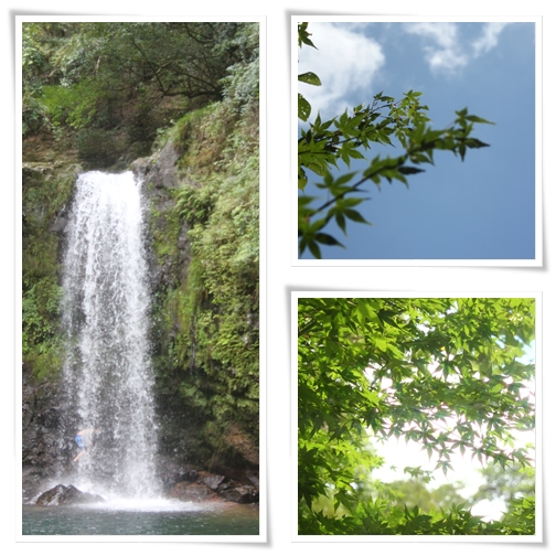 page滝