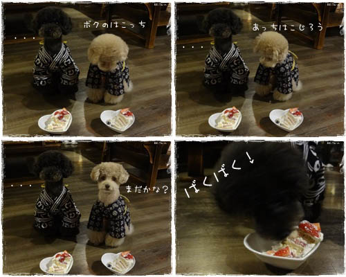 ごえこじケーキ0518A