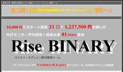 Rise-BINARYb.png