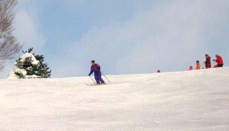 H260114志賀スキー