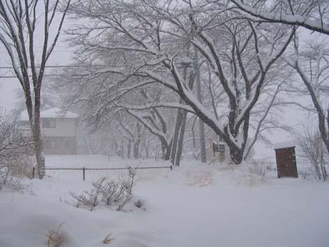 H260208雪景色