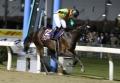 2007 鎌倉記念 レース _1