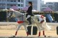 誘導馬 椿 タカノさん