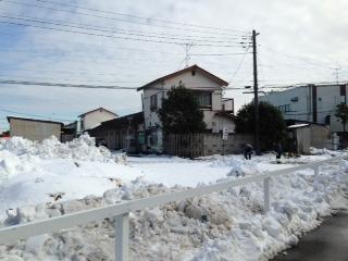 140209雪の小向トレセン4