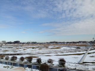 140209雪の小向トレセン2