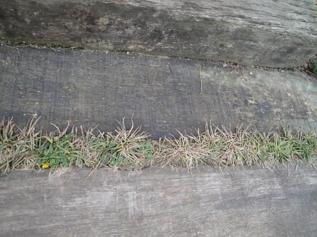 枕木 (640x480)