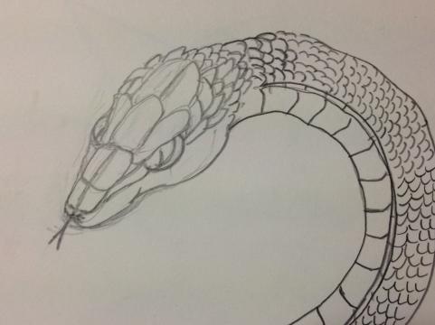 蛇の絵練習中