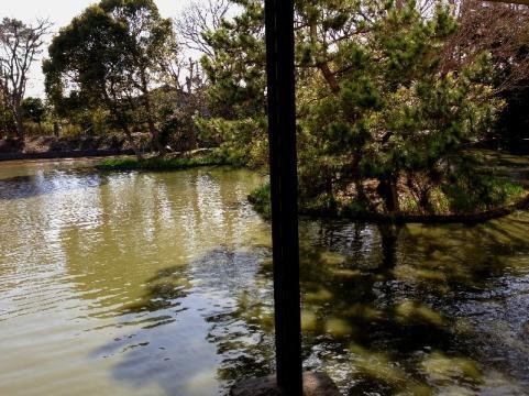 平家池の事