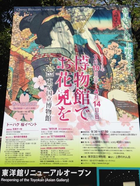 上野恩賜公園2013春1