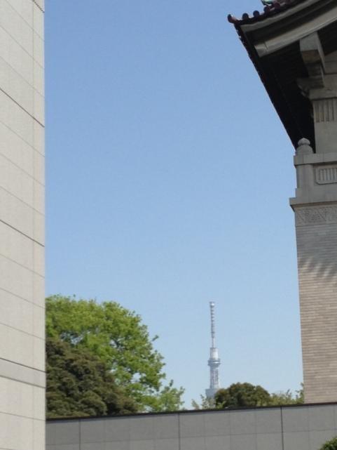 上野恩賜公園2013春2