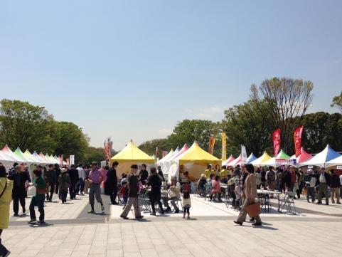上野恩賜公園2013春3