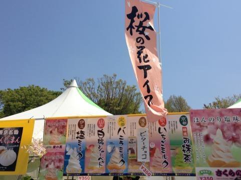 上野恩賜公園2013春4