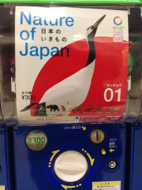 日本の生き物1