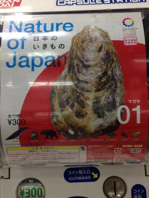 日本の生き物3