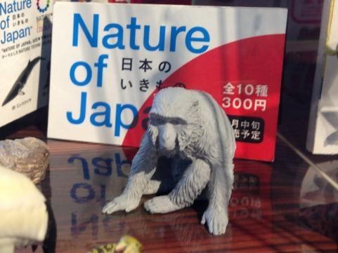 日本の生き物7