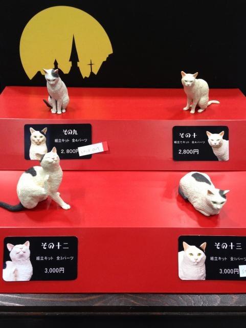 WF2013夏森口修の猫