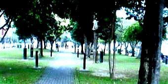 梅花邸3(憩広場)-340