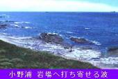 K3小野浦(岩場)-170