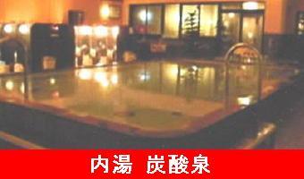 2竜泉寺の湯(内湯)-340