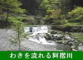 K3榊野温泉すずめ(阿川)-170