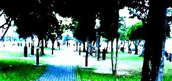 一期一会41(公園)-340