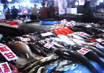 一期一会62(魚市場2)-340