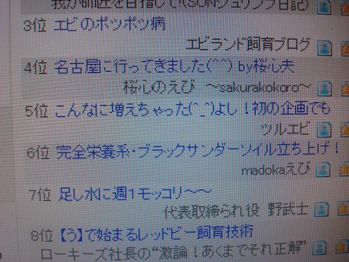 DSC05781_convert_20121102002311.jpg