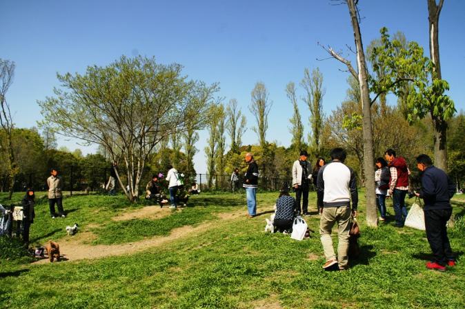 DSC08584加工水元公園