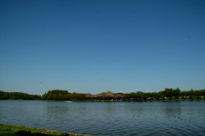DSC08550水元公園