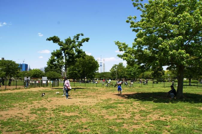 DSC00276木場公園