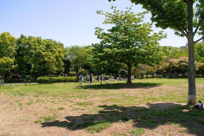 DSC00208木場公園
